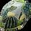Thumbnail: City Sport Cactus