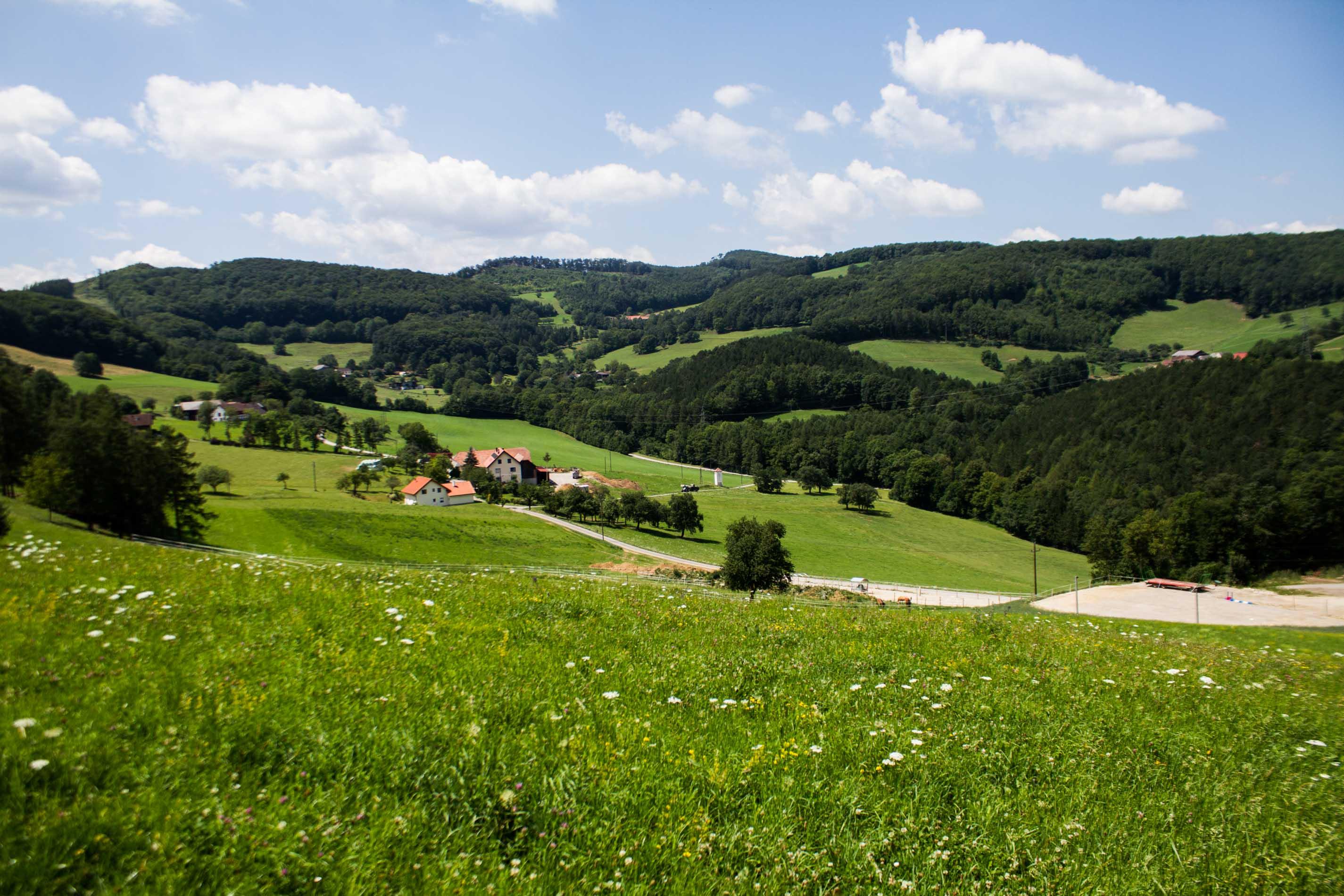 Singlebrse in Baden und Singletreff - flirt-hunter