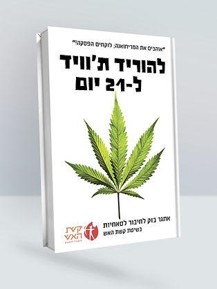 Book_Cover_Mockup (1).jpg