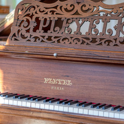 Passion Instruments