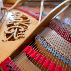La passion pour les instruments de musique