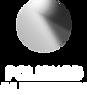 polished aluminium.png