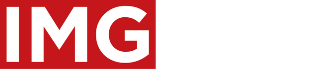 INTEGRATED MANAGEMENT GROUP - IMG - LOGO