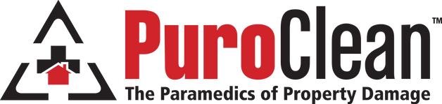 PUROCLEAN - LOGO - OFFICIAL.png