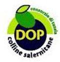 Logo_Colline Salernitane.jpg