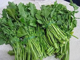 Broccoli.1.jpg