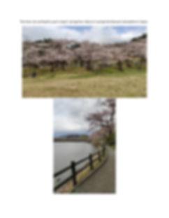 JapanExperiences (1)_page-0006.jpg