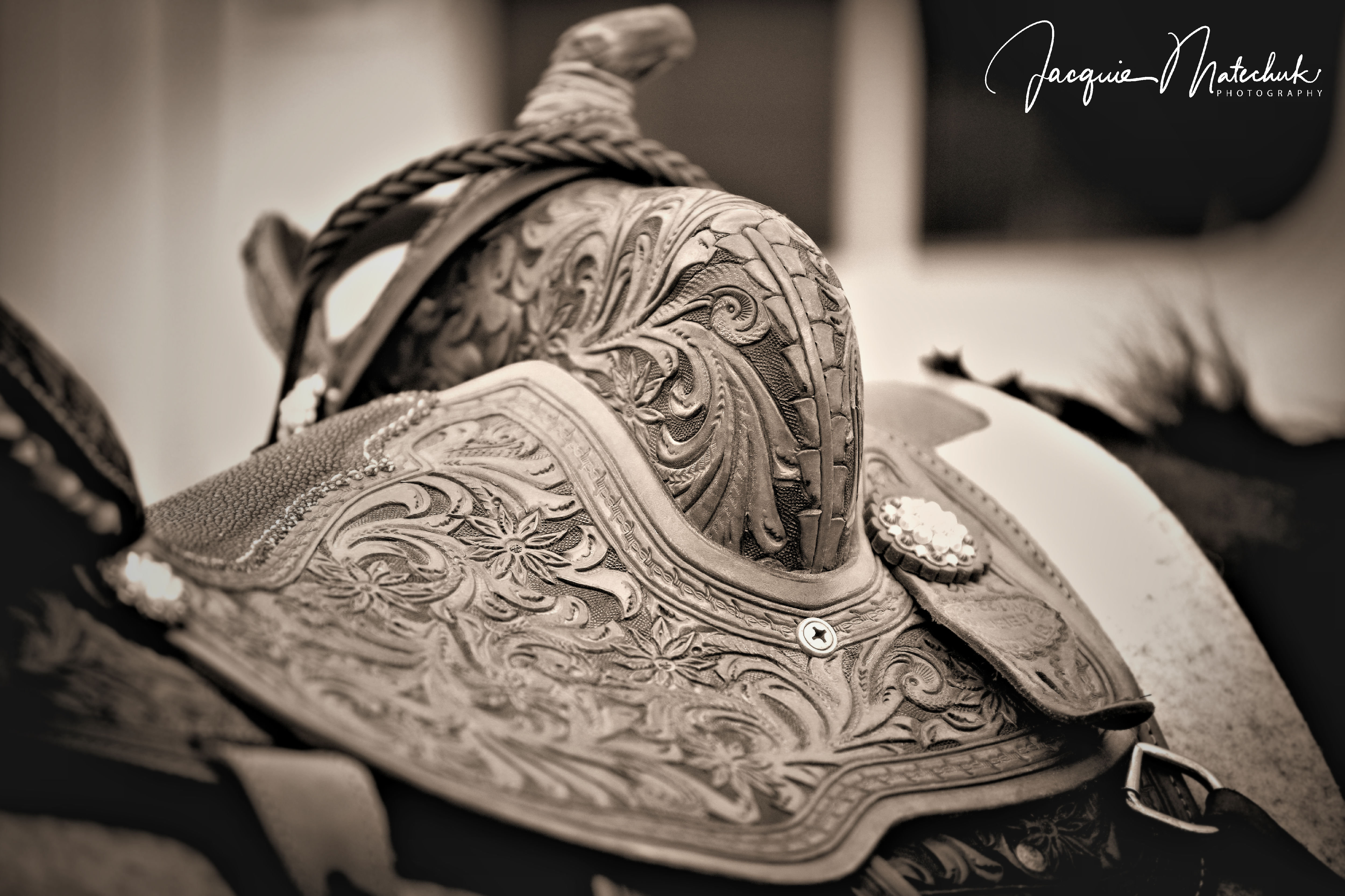 Saddle Beauty