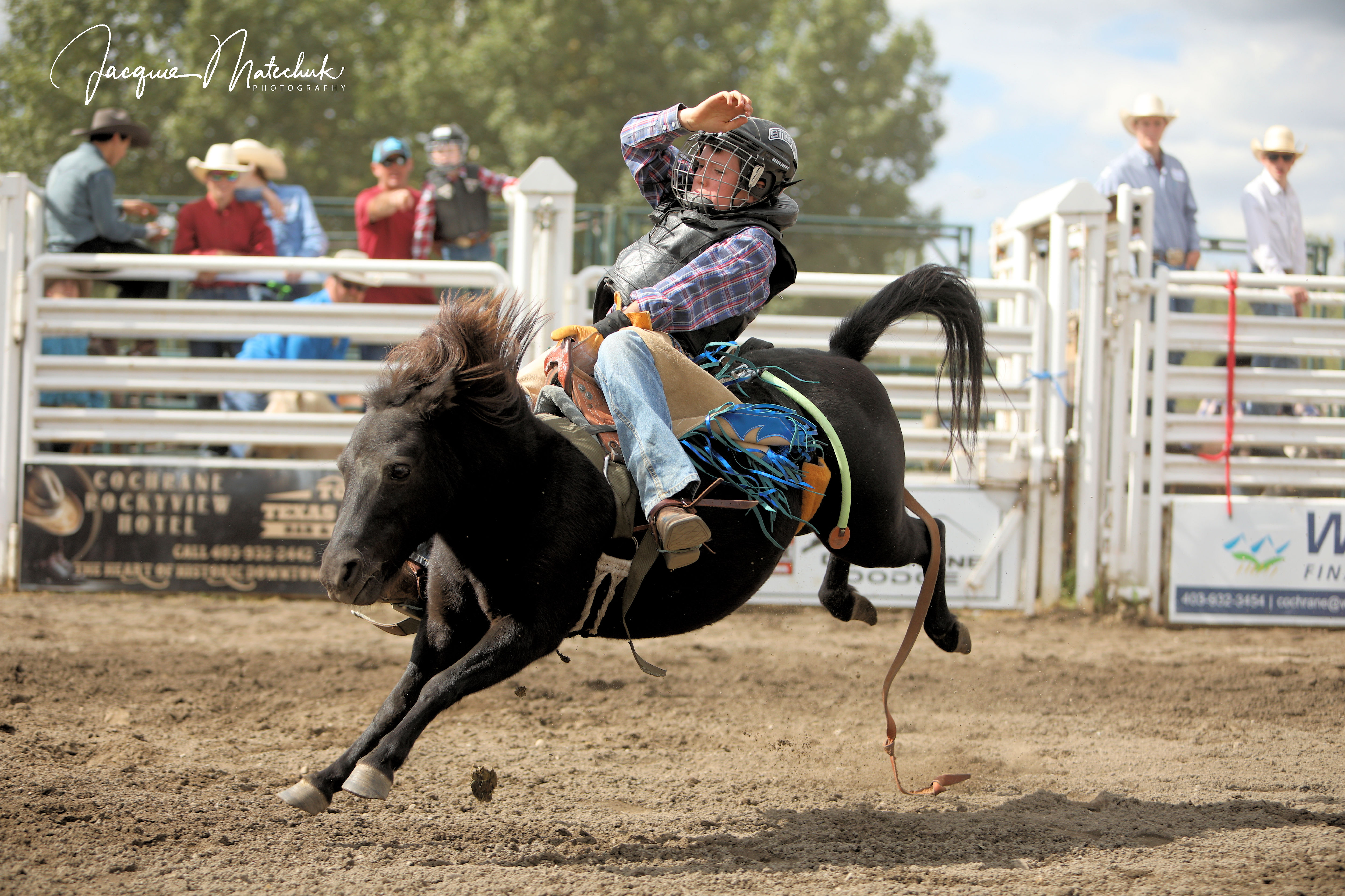 Mini Saddlebronc