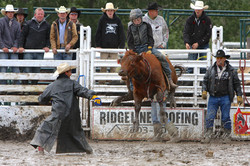 Boys Steer Riding