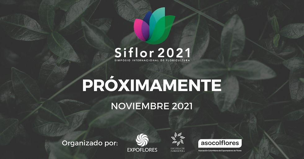 SIFLOR 2021 PW.png