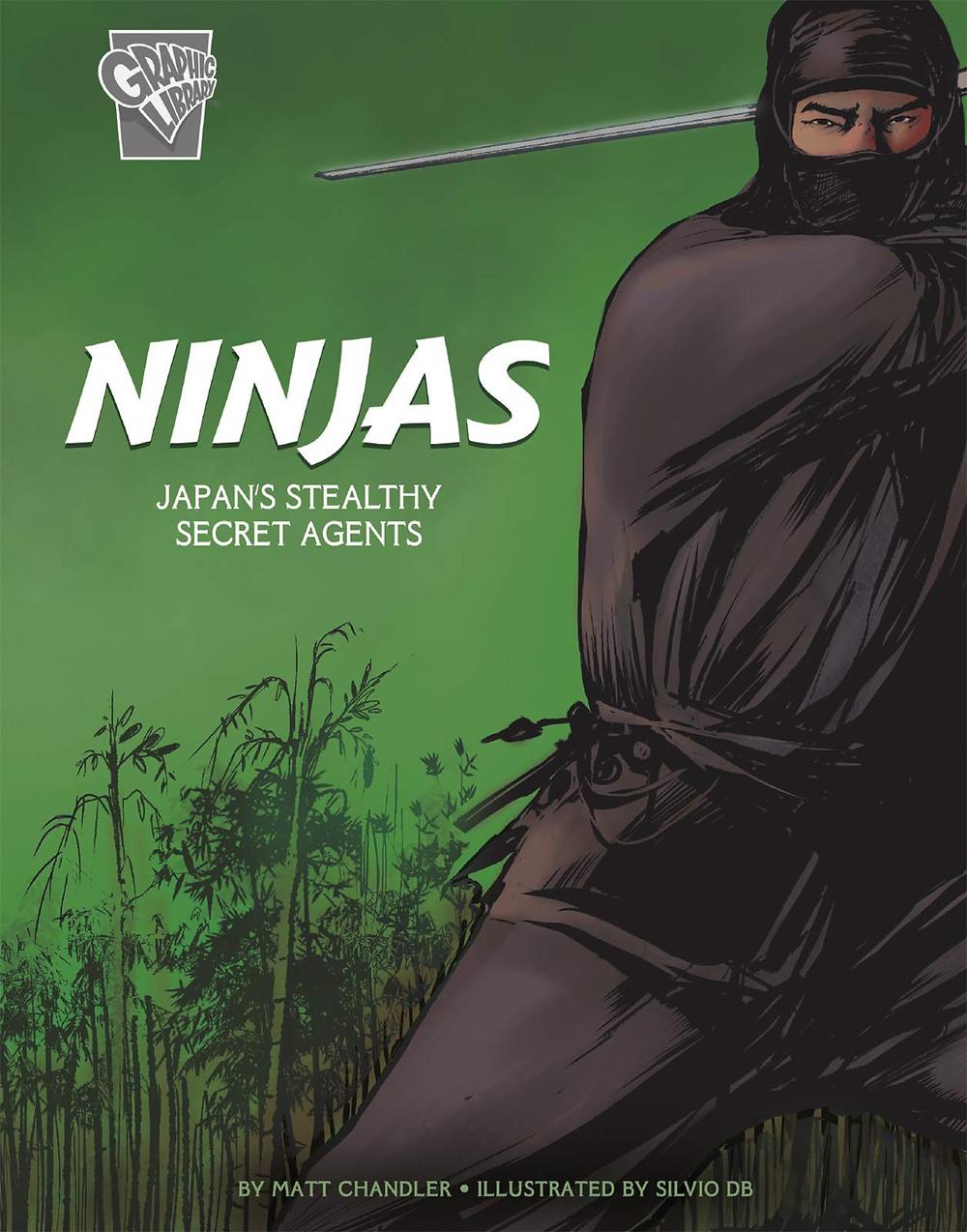 Ninjas- A graphic novel February 1, 2019