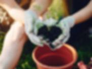 BMN-Gardening.jpg