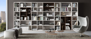 Designing a Home Library
