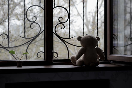 teddy bear looking out window