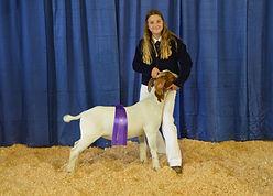 Jorie Forbes - FFA Champion Goat.JPG