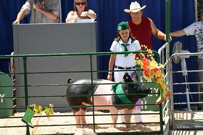 auction fair 2010 014.JPG