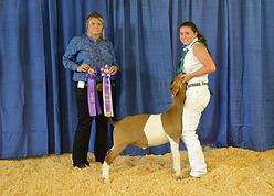 Madison Reis - Grand Champion Goat.JPG