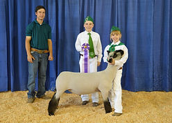 Coralee Pettey - Grand Champion Lamb.JPG