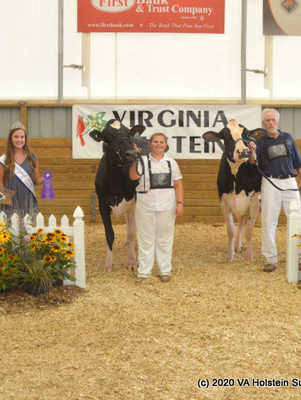 2020 Virginia Holstein Show Report
