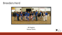 All-Virginia Breeders Herd