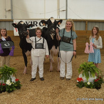 120-Grand Champion Open-A Janney Reserve