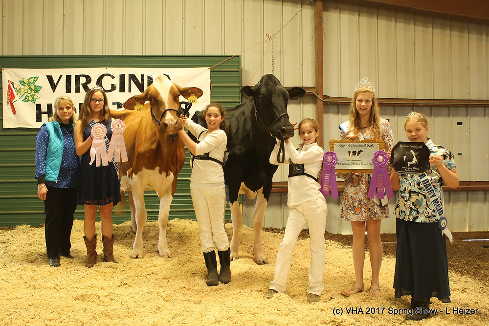 Grand and Reserve Grand Champion - Youth Show