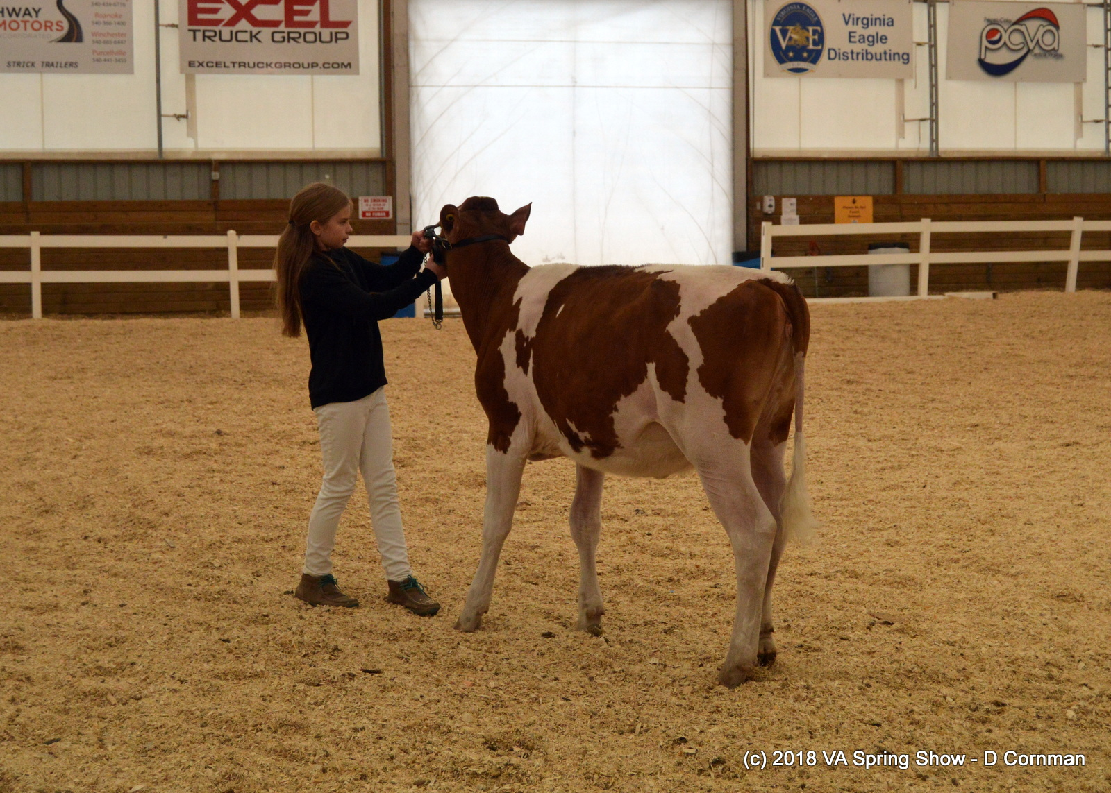 13- Jr Showmanship 1