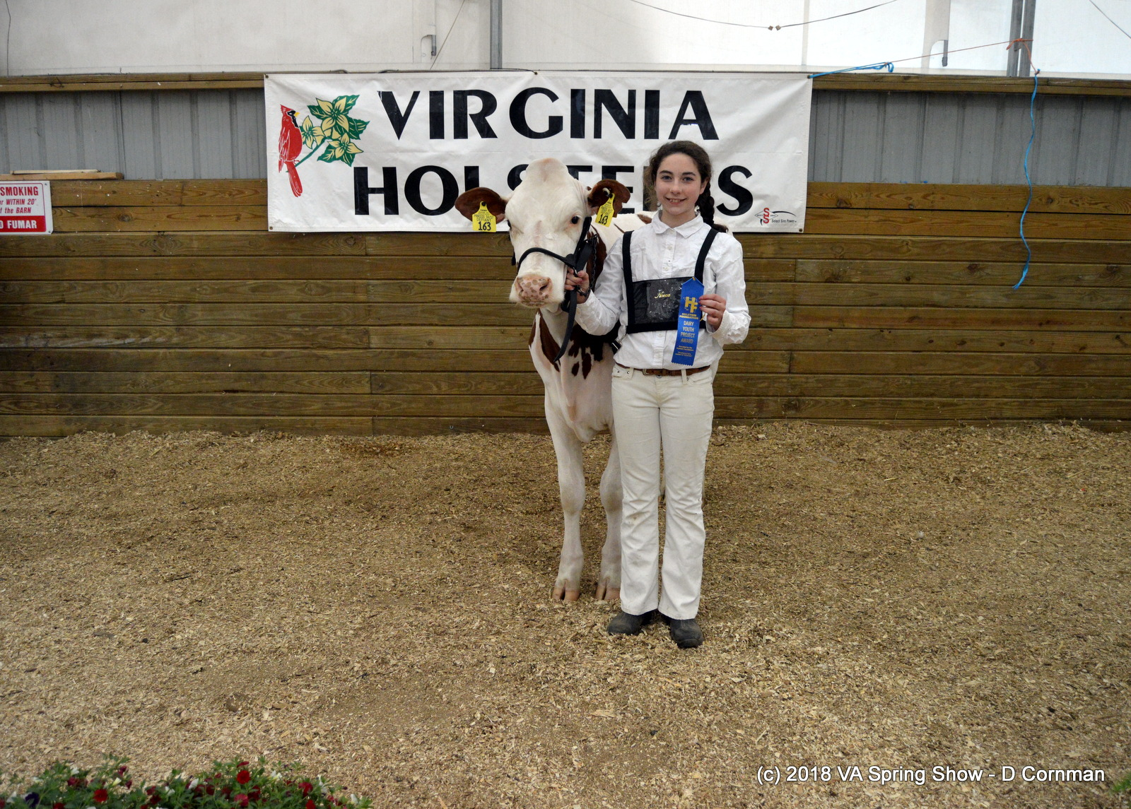 12- Int Showmanship-H Daubert