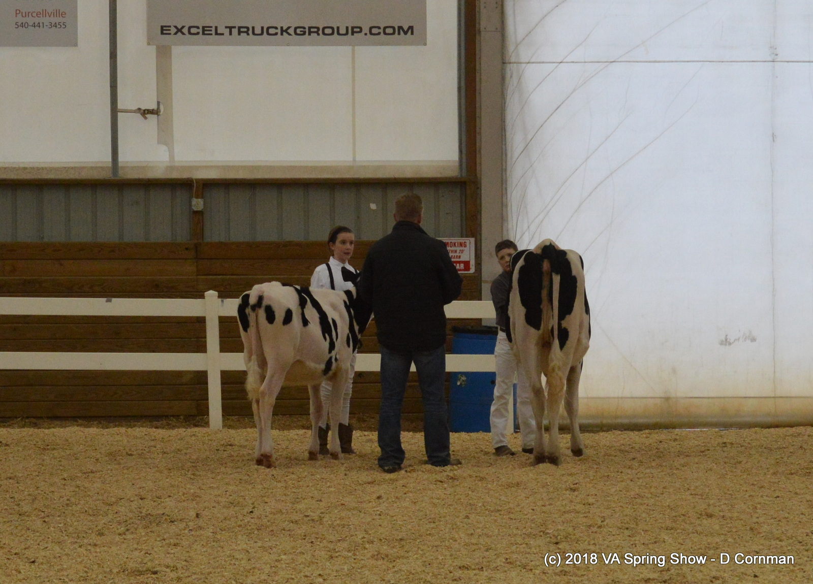 15- Novice Showmanship