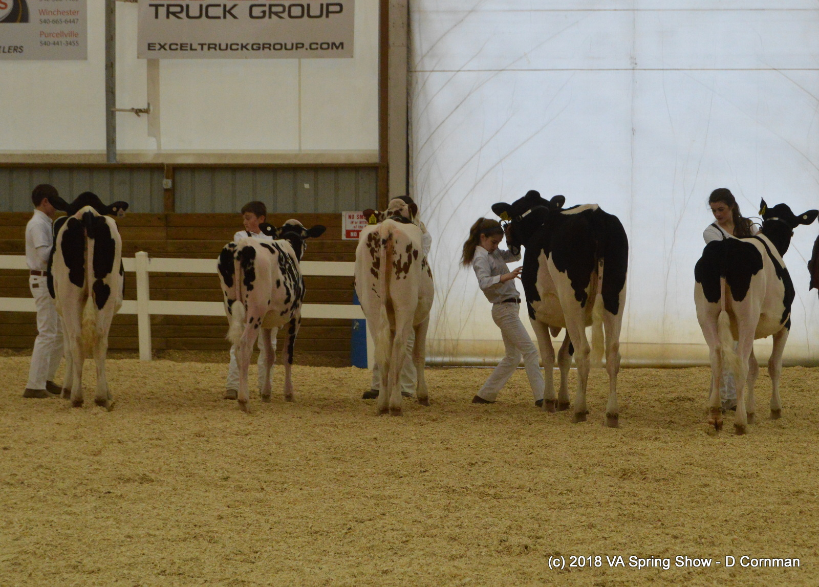 10- Int Showmanship 2