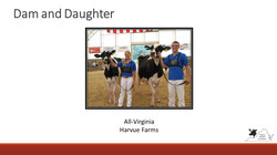 All-Virginia Dam and Daughter