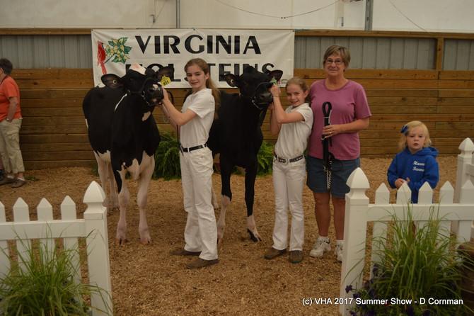 51st VA Holstein Summer Show Results
