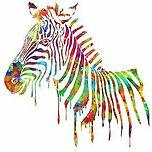 Zebra-Watercolor-Print-Multi-Color-Art-P