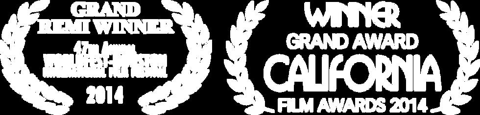 Film Awards 2014