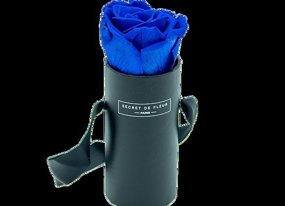 Noir Individuel - Bleu