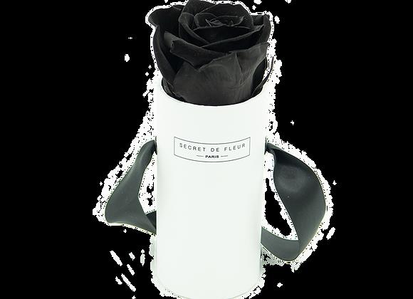 White Eternal Collection - Mini Deep Black