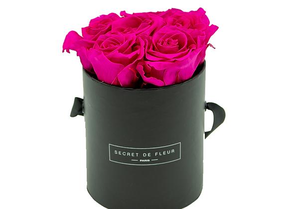 Noir Petit - Rose Bonbon
