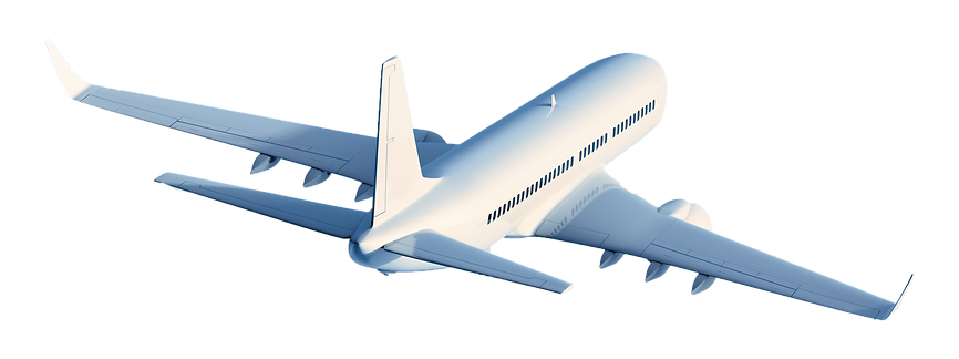 iStock-155380716-fly.png