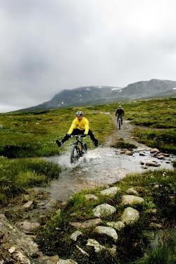 rune-hoydahl-viser-vei