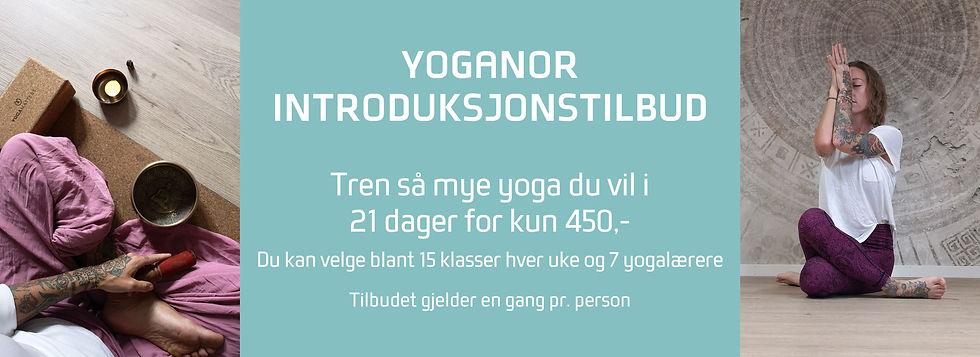 Yoganor introtilbud.jpg