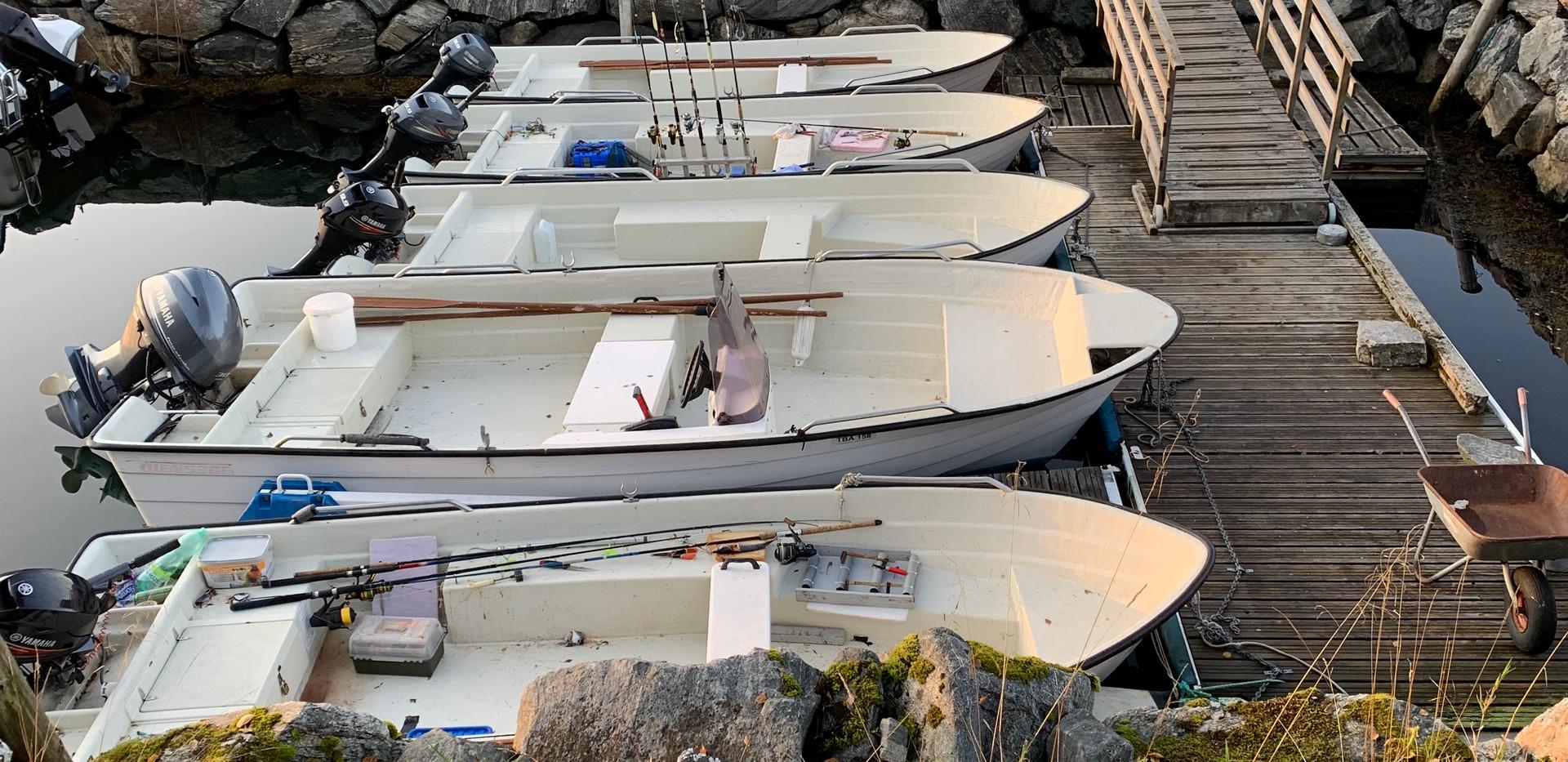 båtene.jpeg