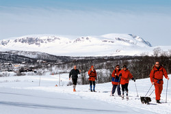 Vinter - Skiturer