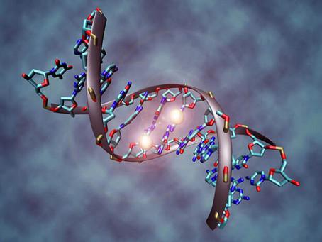 ИЕШУА О ДНК