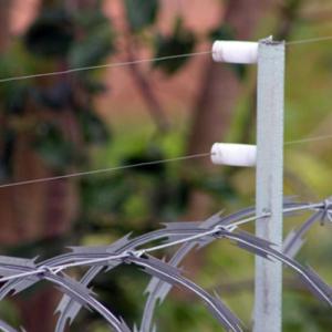 Utilidades da Cerca Elétrica e a Concetrina