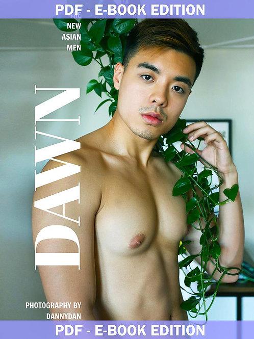 The New Asian Men - DAWN - PDF E-Book