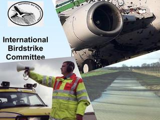 Airport Bird Hazard Management