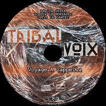rond_cd-copie 4.jpg