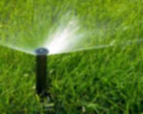 Sprinkler_edited.jpg