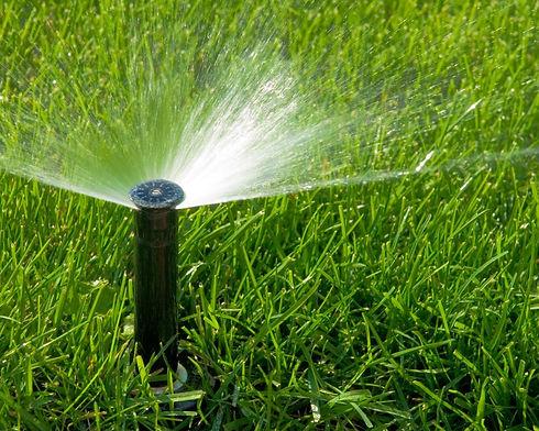 Sprinkler_edited.jpg